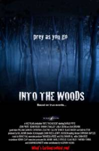 В лесу / Into the Woods