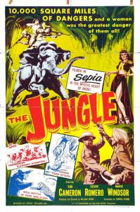 The Jungle / The Jungle